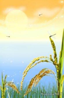 Красивый летне-пейзажный PSD-исходник - 55 (PSD)