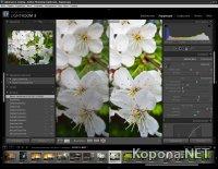 Adobe Photoshop Lightroom 3 v3.4.1 + Русификатор